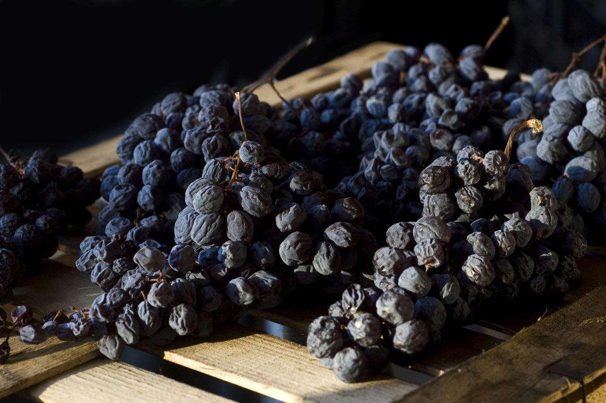 Uva Passita - appassimento uva